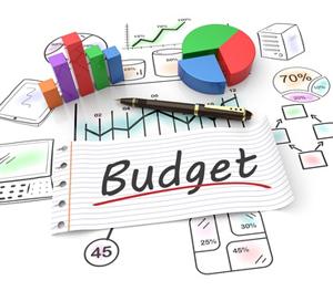 Familie budgetskema